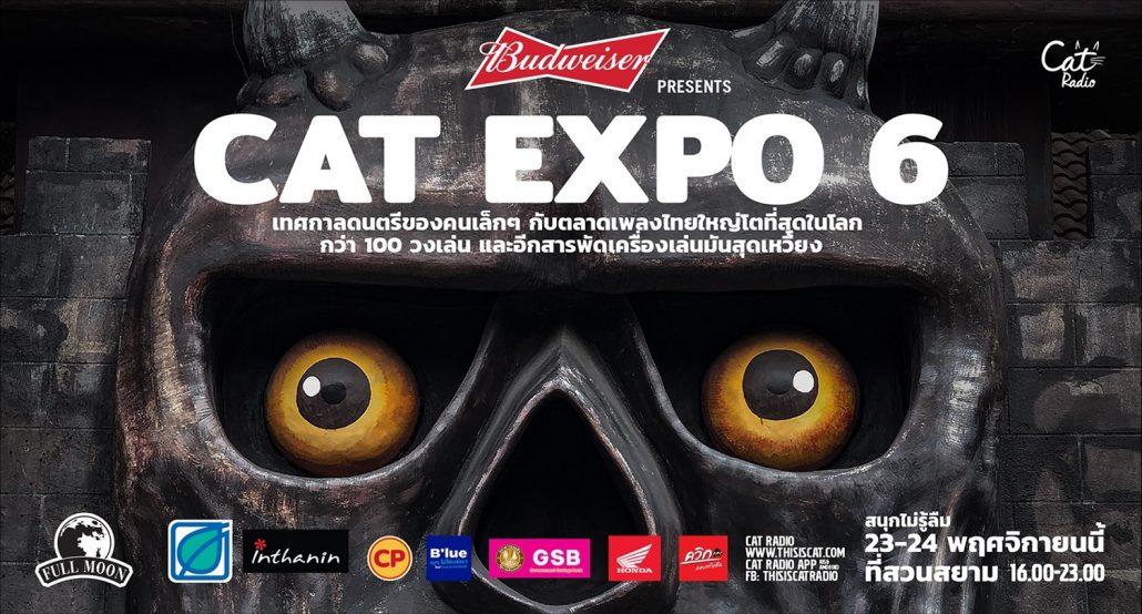 Cat Expo 6