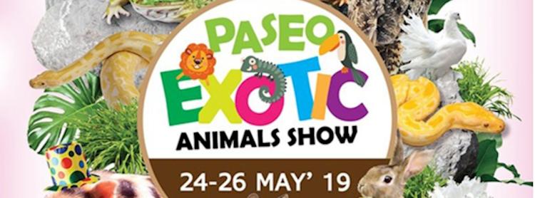 Exotic Animals Show