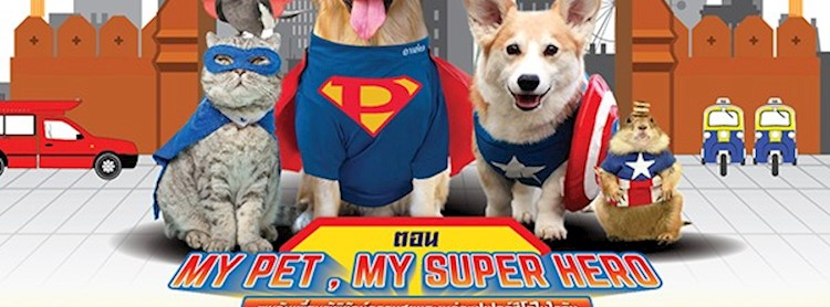 Chiangmai Pet Fair 2019 ตอน MY PET , MY SUPER HERO