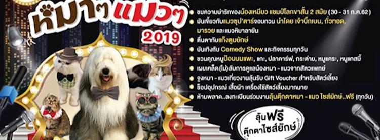 หมา ๆ แมว ๆ 2019