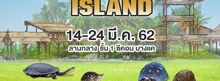 Turtles Island