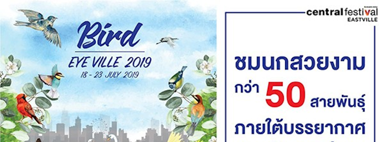 Bird Eye Ville 2019