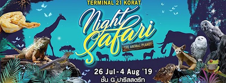 The Animal Planet Night Safari
