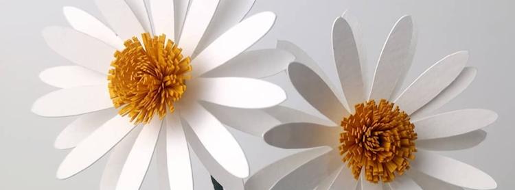 "CMDW19 Workshops ""Easy Paper Flowers"" by OHMYCRAFT STUDIO"