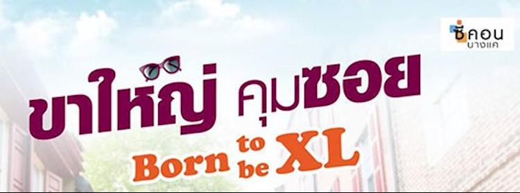 Born to be XL ขาใหญ่คุมซอย