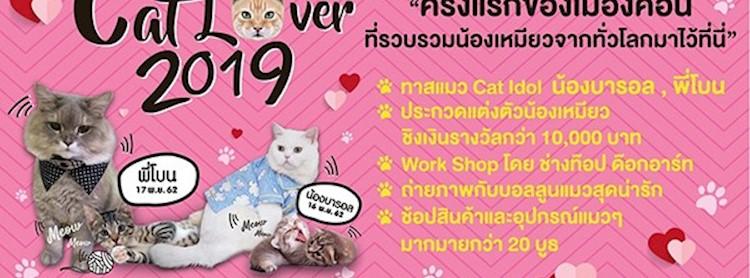 Cat Lover 2019